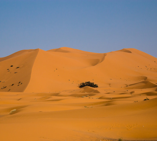 Marrakech to fes desert tour 3 days